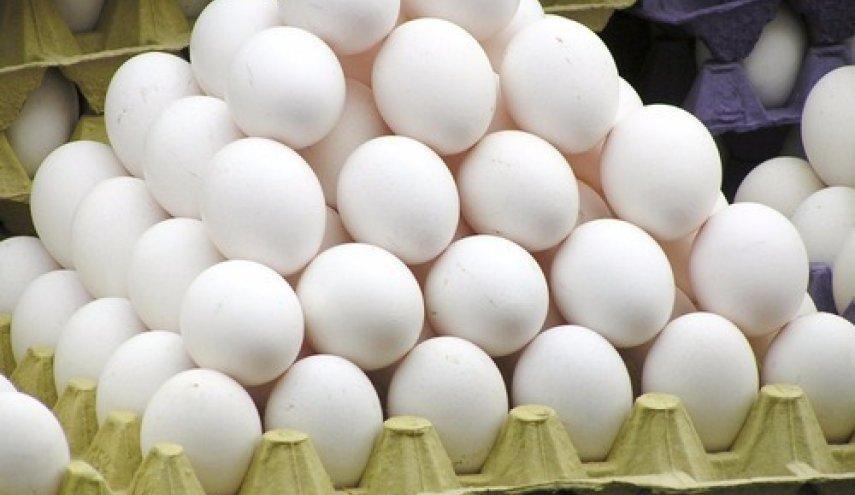 ترکاشوند در گفت و گو با خبرنگاران: بازار تخم مرغ متعادل است، دریافت نرخ های دلخواه برای حمل و نقل نهاده های دامی