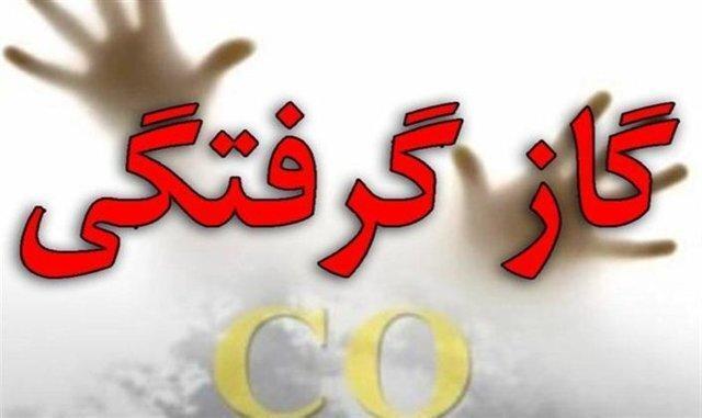 تهران در صدر آمار گازگرفتگی ، بیشترین فوتی ها در فارس و مازندران