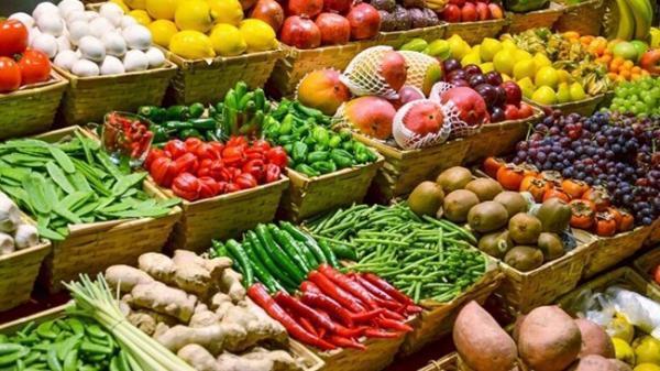 راه اندازی روستا بازار تهران به زودی