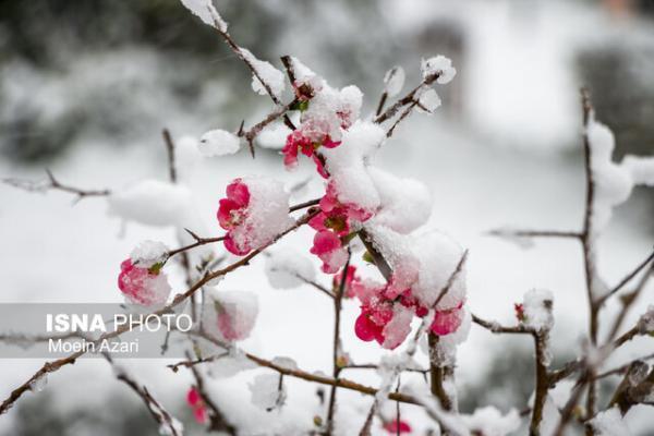 رفت و برگشت برف و باران به گیلان، کاهش 3 تا 6 درجه دما از فردا