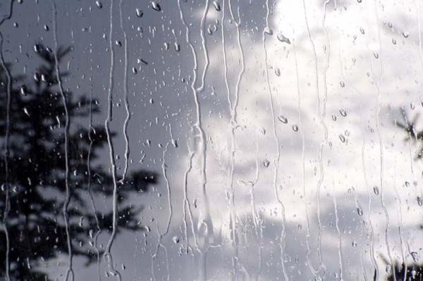 خبرنگاران بارش باران در روز سیزده بدر در بعضی نقاط کشور
